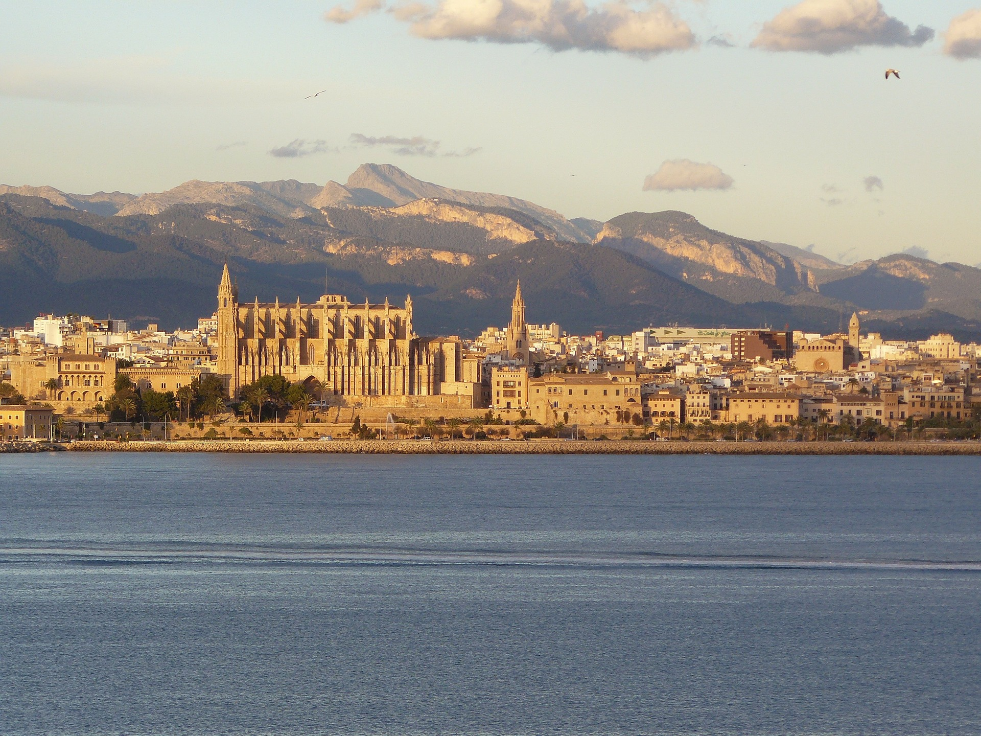 Best five things to do & see in Palma
