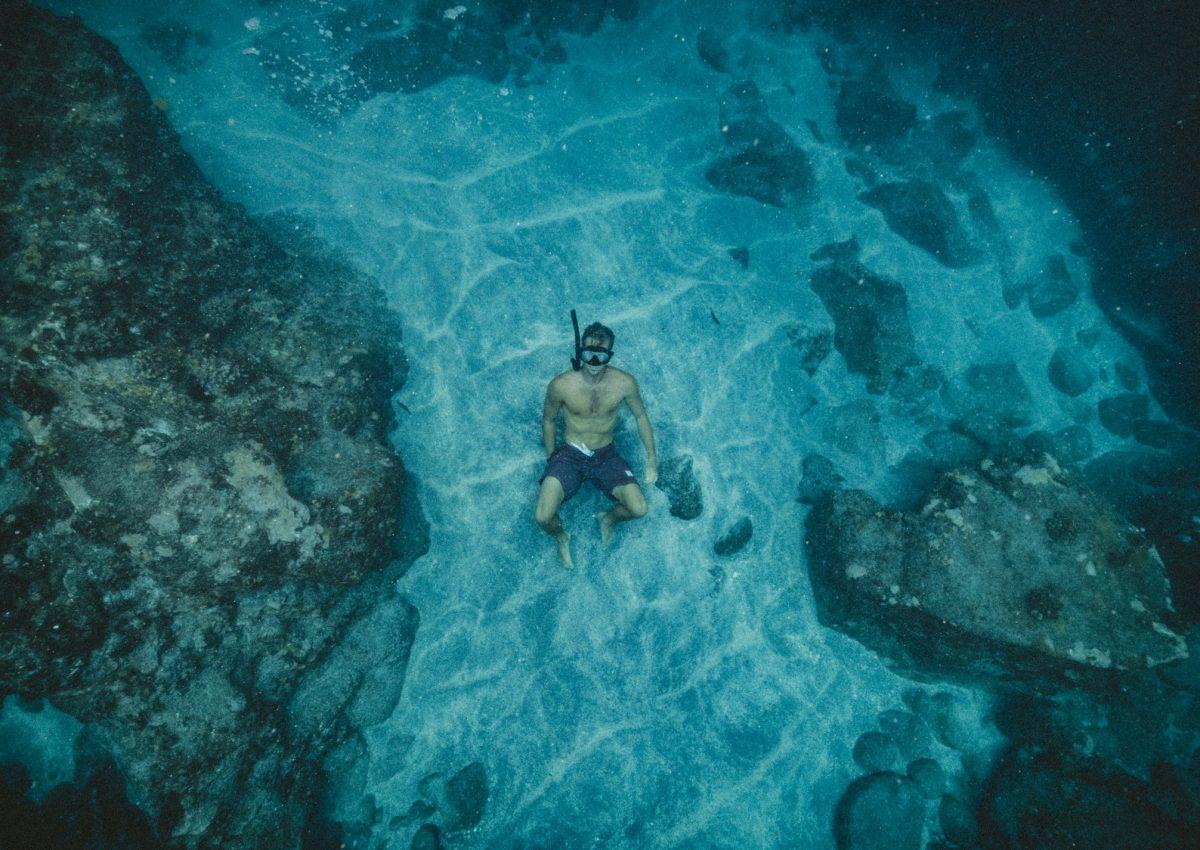 Aqua and aquariums